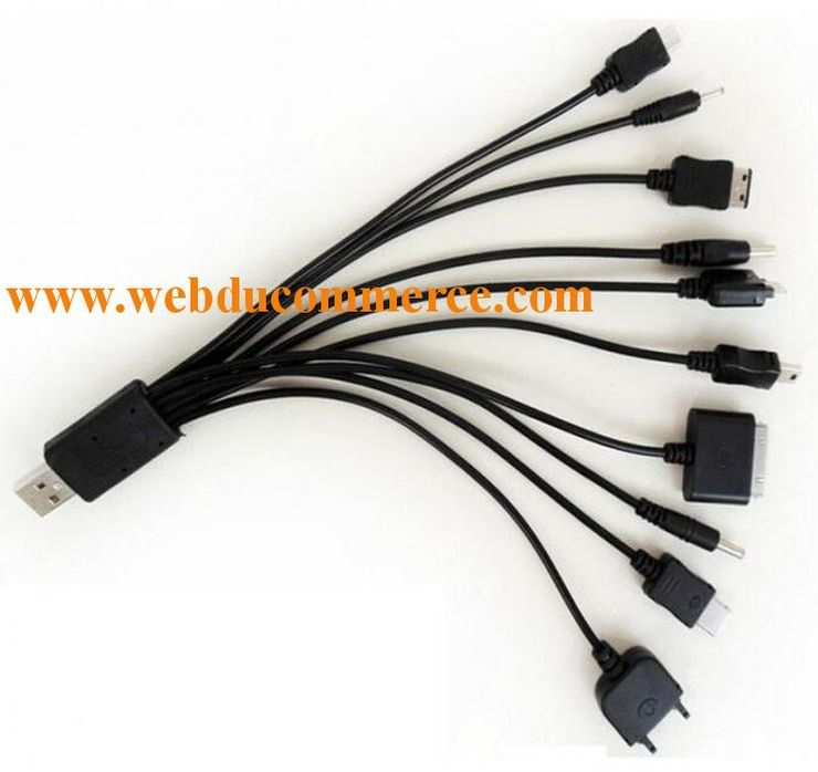Cable Universelle USB Compatible Iphone Samsung